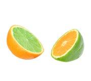 Limefrukt i orange och orange i limefrukt. Arkivfoto