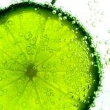 Limefrukt med isolerade bubblor Arkivfoton