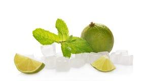 Limefrukt med mintkaramell- och iskuber arkivfoton
