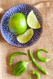 Limefrukt och chili Fotografering för Bildbyråer