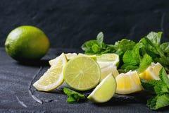 Limefrukt och citroner med mintkaramellen royaltyfria bilder
