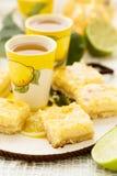 Limefrukt- och citronstänger royaltyfri bild