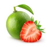 Limefrukt och jordgubbe arkivbilder