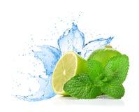 Limefrukt och minten bevattnar på färgstänk royaltyfri foto