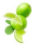 Limefrukt och mintkaramell Royaltyfri Fotografi