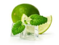 Limefrukt och mintkaramell med iskuber fotografering för bildbyråer
