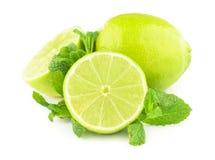 Limefrukt och mintkaramell som isoleras på vit Royaltyfria Bilder