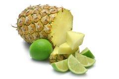 limefrukt sörjer Royaltyfri Fotografi