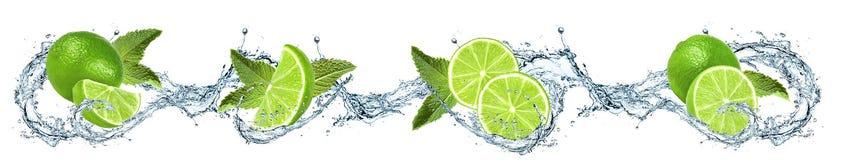 Limefrukt, sidor och vattenfärgstänk royaltyfri foto
