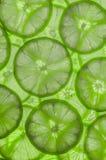 Limefrukt skivar bakgrund Royaltyfria Bilder