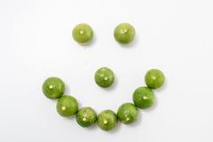 Limefruktcitrusfrukt Fotografering för Bildbyråer