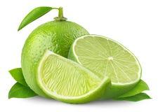 limefrukter arkivbilder