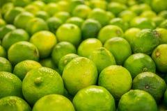 limefrukter Royaltyfria Foton