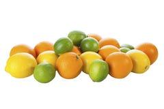 Limefrukter apelsiner, citron Royaltyfri Bild