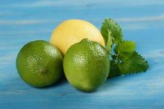 Limefrukter och citron Royaltyfri Foto