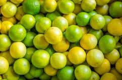 Limefrukter och citroncloseup Arkivfoton