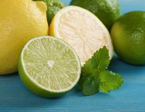Limefrukter och citroner Royaltyfri Bild