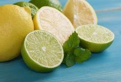 Limefrukter och citroner Fotografering för Bildbyråer