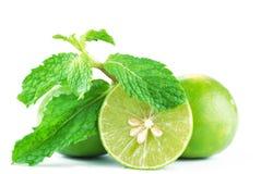 Limefrukter och mint Royaltyfri Bild
