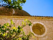 Limefrukter som växer i gården av en gammal moské fotografering för bildbyråer
