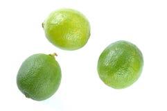 limefrukter tre Royaltyfria Bilder