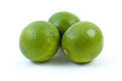 limefrukter tre Royaltyfria Foton