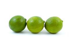 limefrukter tre Arkivbilder