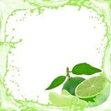 Limefruktfärgstänk royaltyfria foton