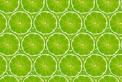limefruktmodell Arkivfoto