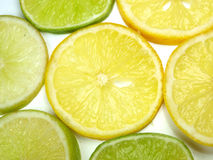 limefruktremsor Royaltyfria Bilder
