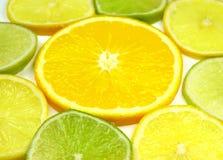 limefruktremsor Arkivbilder