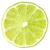 limefruktskiva Royaltyfri Foto