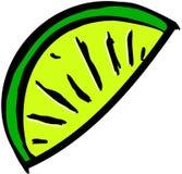 limefruktskiva Royaltyfri Fotografi