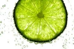 limefruktskivavatten fotografering för bildbyråer