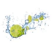 Limefruktskivor i vatten plaskar på vit bakgrund arkivbild