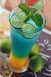 limefruktstansmaskin Fotografering för Bildbyråer