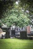Limerick cemetery Royalty Free Stock Photo