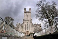 limerick de cathédrale Image libre de droits