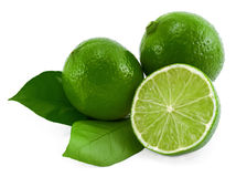 Limes. Royalty Free Stock Photos