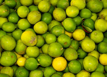 Limes. Pile of fresh limes in a market in Hurghada, Egypt Stock Photo