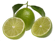 Limes. Arranged on white background Royalty Free Stock Photos