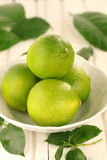 Limes. Stock Images