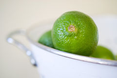Limes. In white colander against beige background Royalty Free Stock Images