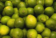 Limes. Many limes in a box Stock Photography