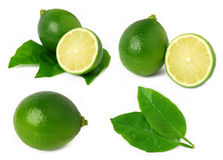 Limes. Ripe limes isolated on white background royalty free stock images