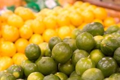 Limes against Lemons royalty free stock photography