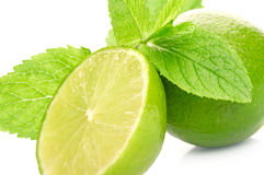 Limes And Mint Stock Photo