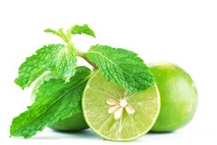 Free Limes And Mint Royalty Free Stock Image - 43683986