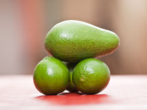 Limes and avocado Stock Photography