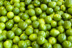 Limes in a bunch Royalty Free Stock Image